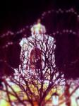 ~Casa Bonita's Tower~